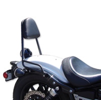 MC Enterprises Sissy Bar with Pad