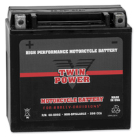 Twin Power Maintenance Free AGM Battery