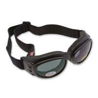 Bobster Cruiser 2 Interchangeble Goggles