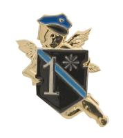Gunz Law Enforcement Asterisk Pin