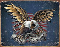 Nostalgic Images Live To Ride Eagle Collector Metal Sign
