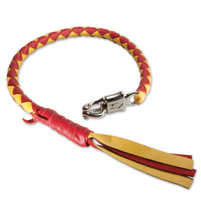 WhoopAZ Red/Yellow Getback Whip