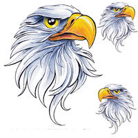 Lethal Threat Eagle Head Decal Set