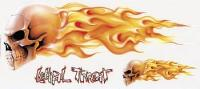 Lethal Threat Flaming Skull Decal Set