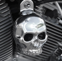 Chrome Dome Polished 3-D Skull with Cut Out Eyes Horn Cover