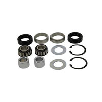 Big Twin Hub Rebuild Kit for Laced Wheel