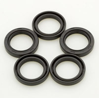 Genuine James Wheel Bearing Oil Seal for FLT