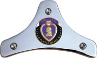 Austin Steiner Purple Heart Backrest Cover