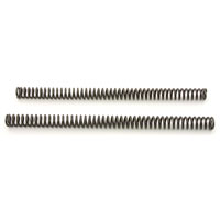 Fork Tube Springs