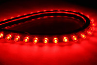 Stingerz Cruiser Level 3 Red LED's