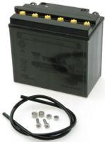 YUASA Yumicron CX 12v Battery