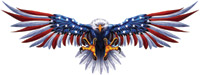 Lethal Threat USA Eagle Decal