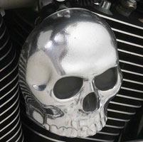 Chrome Dome Polished 3-D Skull with Painted Eyes Horn Cover