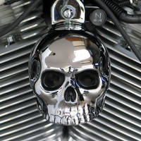 Chrome Dome Chrome Skull with Painted Eyes Horn Cover