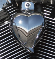 Chrome Dome Chrome Heart Horn Cover