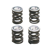 S&S Cycle Valve Spring Kit