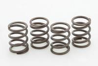 Crane Cams Performance Valve Spring Kit