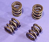 Sifton Stock Valve Spring Set