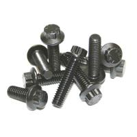 Feuling Cam Support plate / Oil Pump Fastener Kit