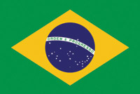 Rumbling Pride Brazil Flag
