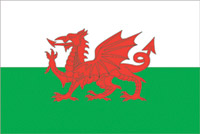 Rumbling Pride Wales Flag
