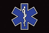 Rumbling Pride Star of Life Flag