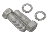Colony Pinch Bolts