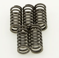 Barnett Performance Products Clutch Spring Kit
