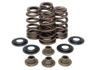 Kibblewhite High-Performance Ovate Wire Beehive Valve Spring Kits