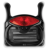 Arlen Ness Black Taillight/License Plate Assembly