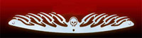 California Custom Cruisers Polished Flamed Skull Windshield Trim