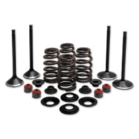 Twin Power Complete Valve & Spring Kit