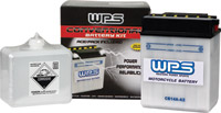 WPS Conventional 6V Standard Battery
