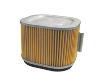 EMGO Stock Type Air Filter