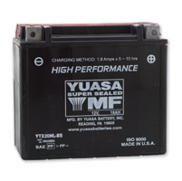 Maintenance Free Battery Model YTX20HLBS