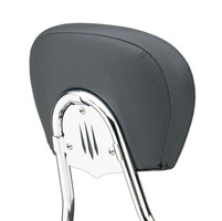 Cobra Backrest Swept Insert
