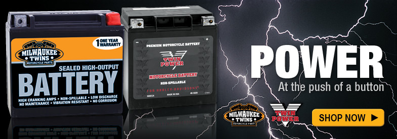Shop Milwaukee Twins Batteries