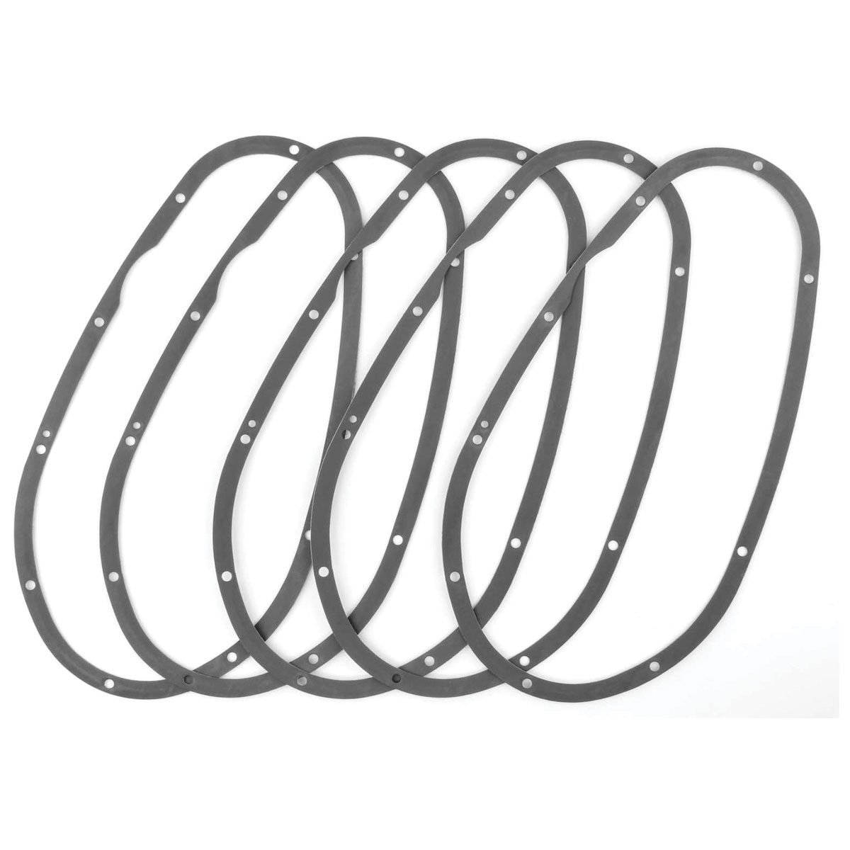 Twin Power Primary Gasket