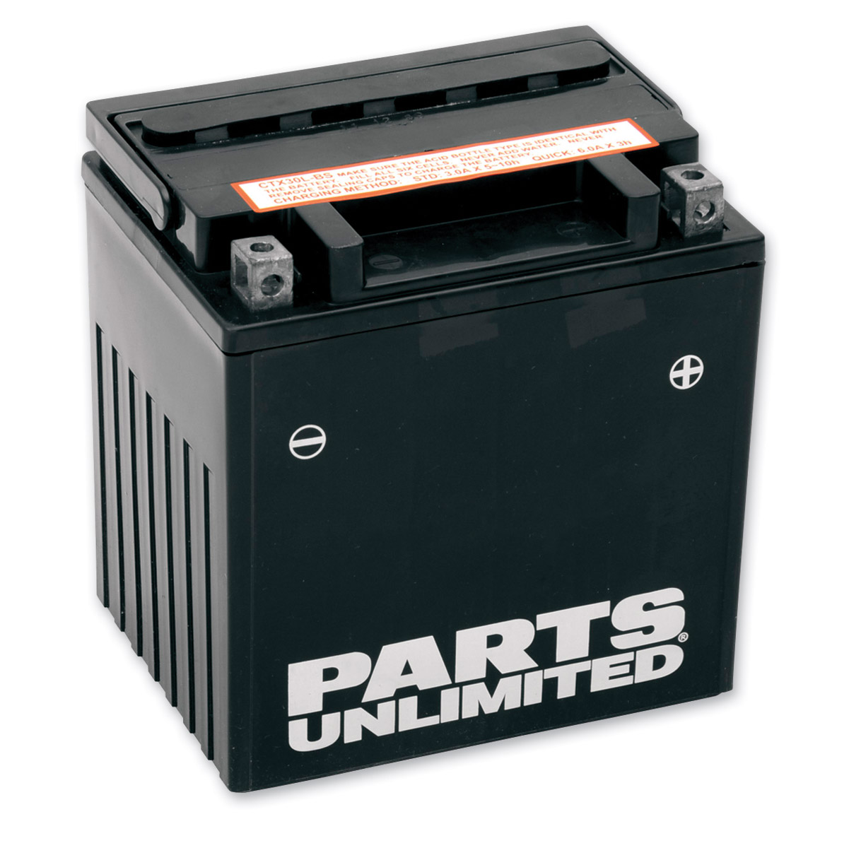 Parts Unlimited AGM Maintenance Free Battery
