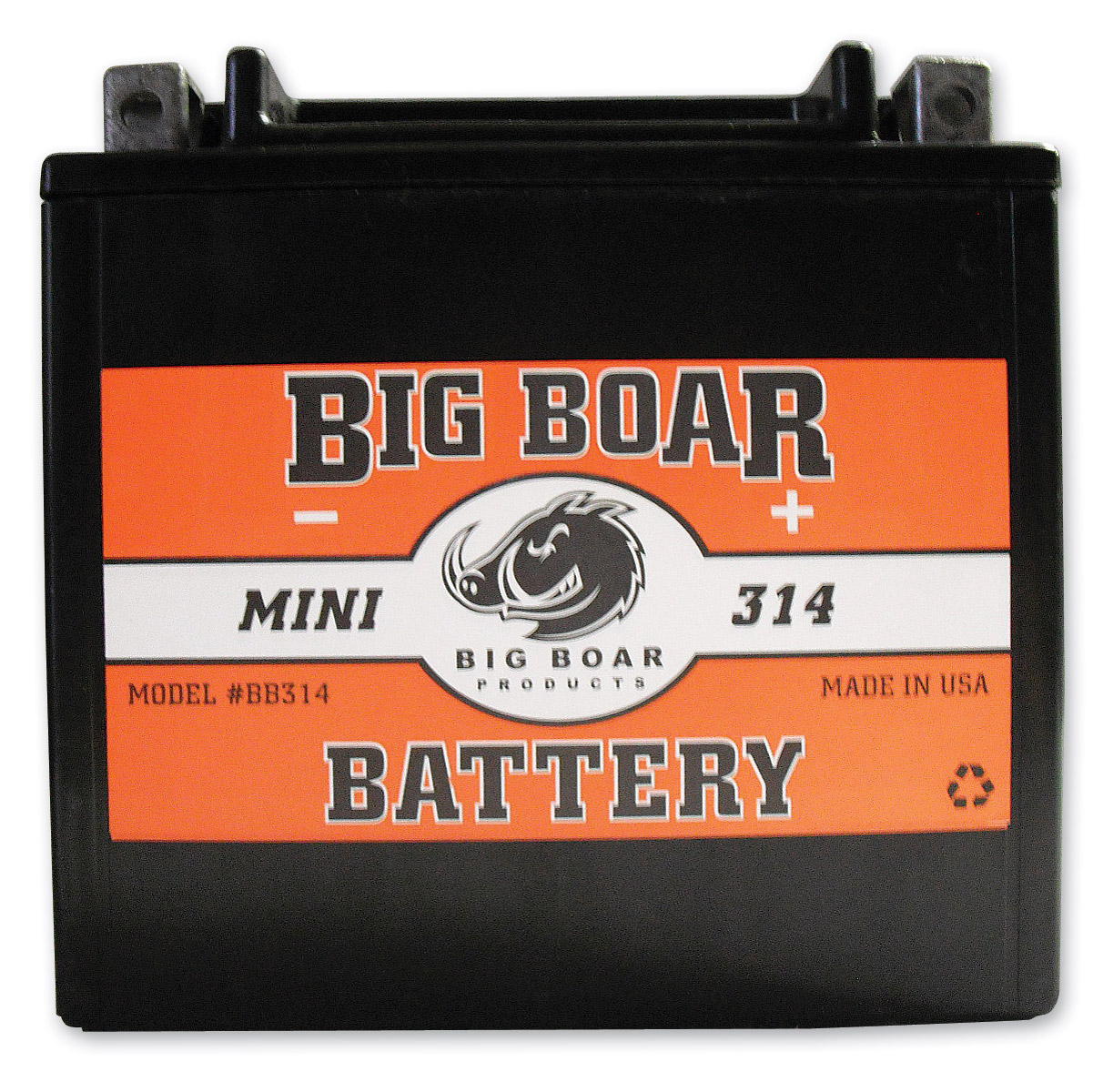 Big Boar Battery Model BB314
