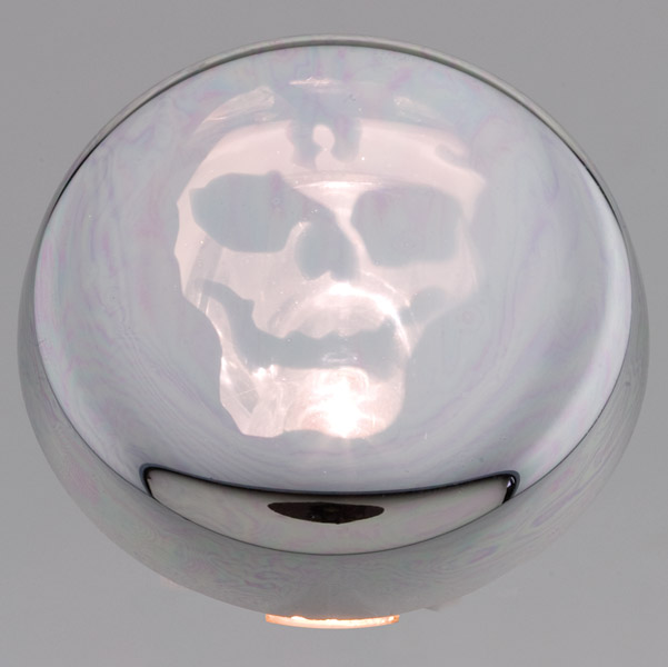 Motor City Cycle Pop-On Clear Chromed Lenses with Skull Graphic for Front or Rear