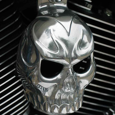 Chrome Dome Polished Evil Twin Skull Horn Cover