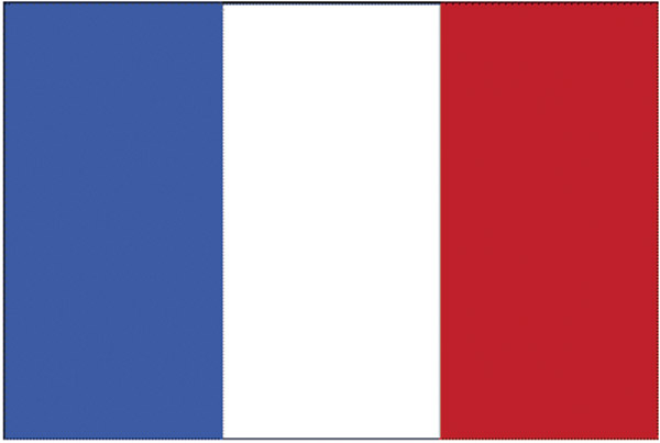 Rumbling Pride France Flag
