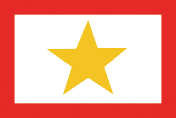 Rumbling Pride Gold Service Star Flag