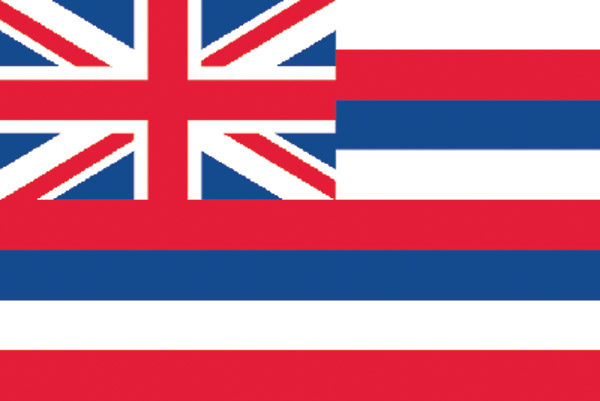 Rumbling Pride Hawaii Flag