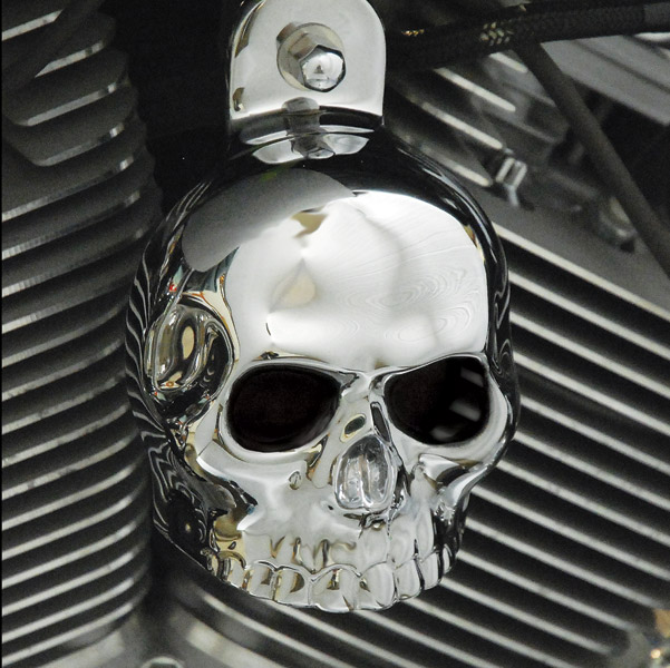 Chrome Dome Chrome Skull Horn Cover