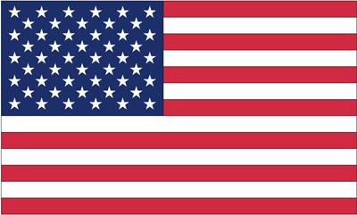 Rumbling Pride USA 6″ x 9″ Flag
