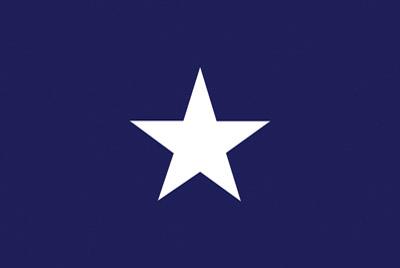 Rumbling Pride Bonnie Blue 6″ x 9″ Flag